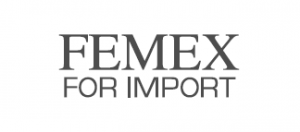 Femex Egypt Logo