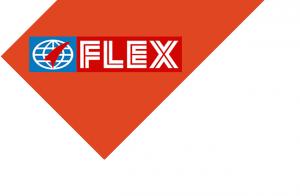 FlexFilms Egypt Logo