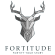 Graphic Design Intern at Fortitude Egypt