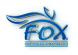Senior Graphic Designer at Fox Advertising Agency