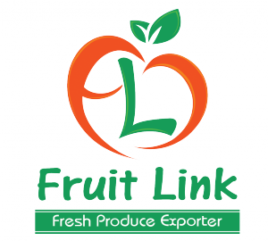 Fruit Link Logo