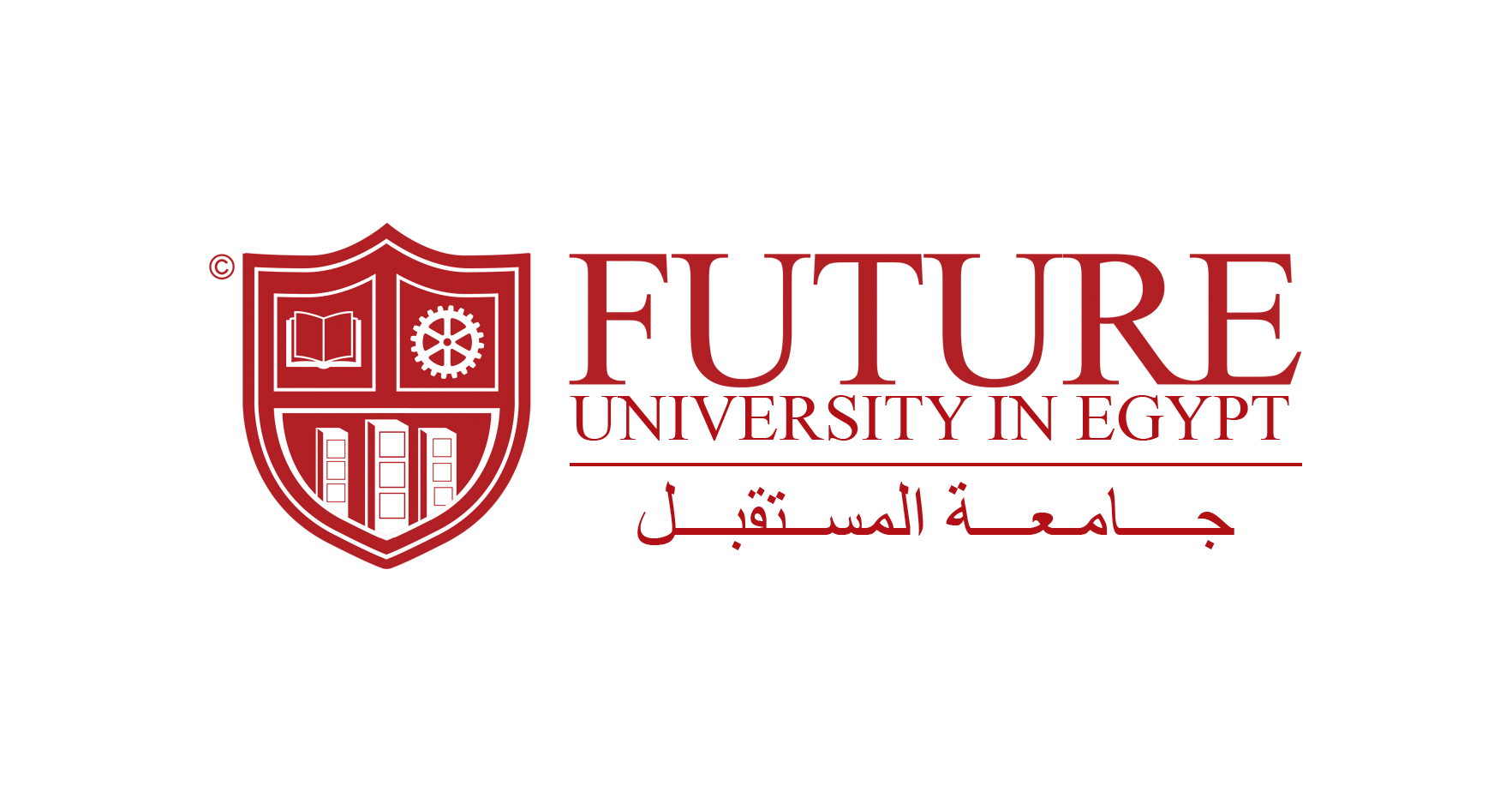 Jobs And Careers At Future University In Egypt Egypt Wuzzuf
