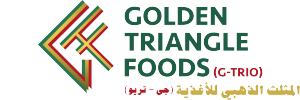 G-Trio Logo