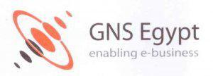 GNSE group Logo