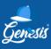 Sales Team Leader at Genesis