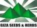 QA Manager at Giza Seeds and Herbs