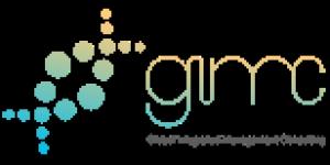 Global IMC Logo
