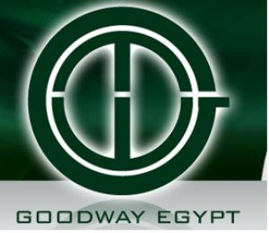Goodway Egypt Logo