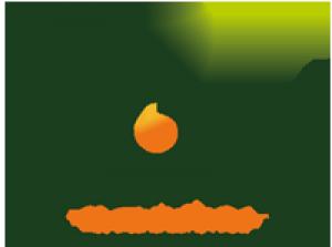 Green Fields Instruments Logo