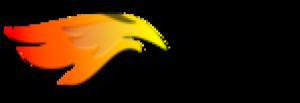 HMASERV LLC Logo