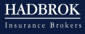 Graphic Designer / Communication Officer at Hadbrok S.A.E