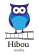 Sales Executive at Hibou media