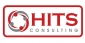 Senior Oracle Netsuite Consultant at Hits-Consulting