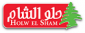 Marketing Manager at Holw El Sham