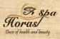 Financial Controller at Horas Spa Company