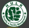 Sales Executive at Hulk Security and Facility Management