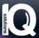 Sales Executive at IQ Solutions