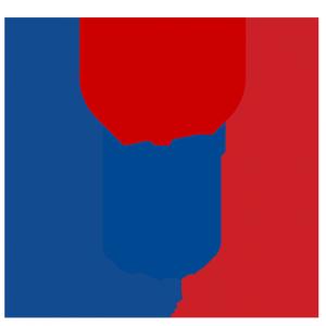 InfoGlobe Logo