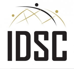 International development support and consulting  Logo
