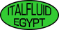 Chief Mechanical Engineer at Italfluid Egypt