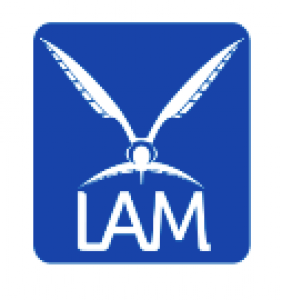 Jobs and Careers at LAM Egypt, Egypt | WUZZUF