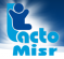 Vice President of Human Resources at Lacto Misr