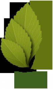 Lehaa Logo