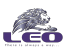 Financial Analyst at LEO Trading Agency