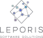 Backend Developer at Leporis Software Solutions