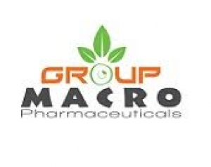 Macro Group Logo
