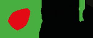 Media Pan arab Logo