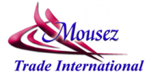 Mousez for study abroad Logo