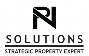 NP Solutions  Logo