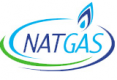 Jobs and Careers at Natgas Egypt