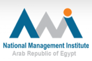 National Management Institute (NMI) Logo