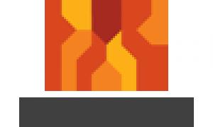 Nazzelha Logo