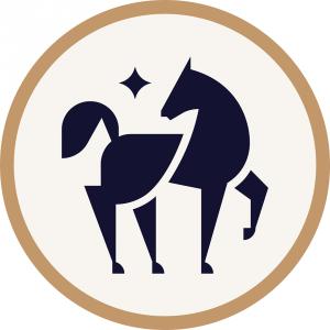 New Black Logo