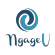 Lotus Script Developer at NgageU