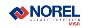 Norel MISR Logo