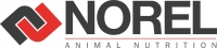 Jobs and Careers at Norel Misr Egypt