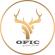 Web & App Developer at Omar Farahat for Interiors and Construction - OFIC