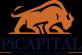 Sales Account Manager at PI-CAPITAL