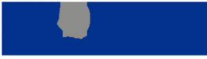 PRODAPS for IT Solutions Logo