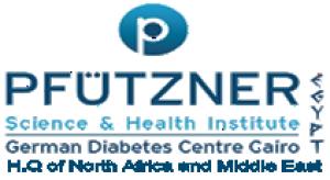 Pfutzner S&E Egypt Logo