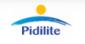 Senior Accountant at Pidilite Industries Egypt