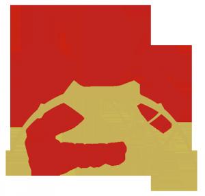 QDS Egypt Logo