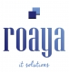 Jobs and Careers at Roaya IT Solutions, Egypt