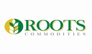 Roots Commodities Logo