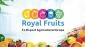 Digital Media Manager at Royal Fruits