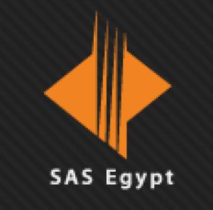 SAS - Egypt  Logo